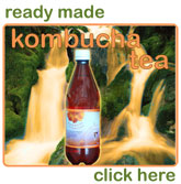 Buy fresh ready made bottled Kombucha Tea